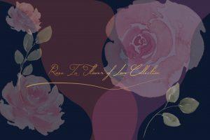 กุหลาบ (Rose) : ตำนานของดอกไม้แห่งรัก